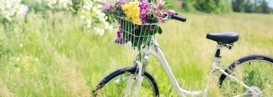 Noa Khamallah explique comment choisir un bon vélo électrique ?